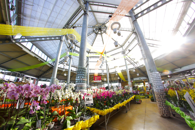 Les jardins du louvre lens maison for Jardinerie des jardins